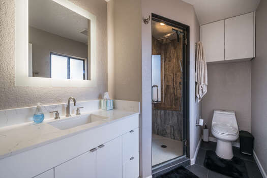 Master Bath with a Steam Shower and White Vanity