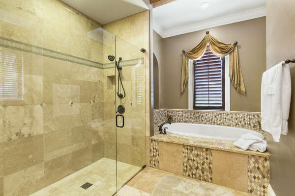 Gorgeous bathtub and walk-in shower