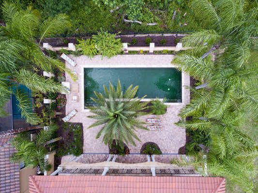 Surrounded by palm trees, you'll truly feel like you're in a hidden oasis