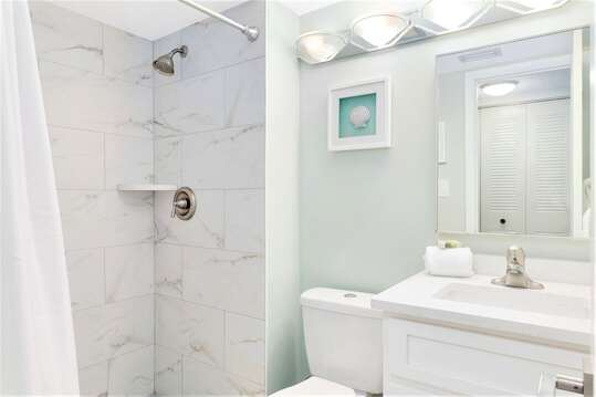 Newly Renovated Guest bathroom with walk in shower