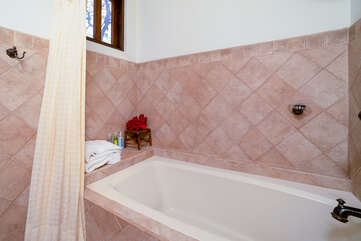 Tub and shower in guest bathroom