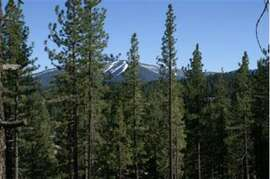 Beautiful view of Northstar Ski Resort