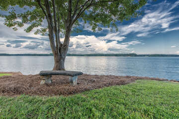 Quaint little spot on the property with a reading bench and shade! Perfect to escape the crazy for a few!
