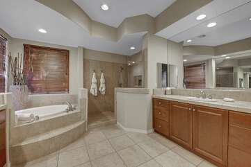 Master bathroom has a huge step in shower and large tub