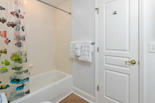 Tub and Shower Unit, Shower Curtain, and Door.