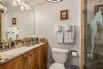 Shared hall bathroom with walk-in shower