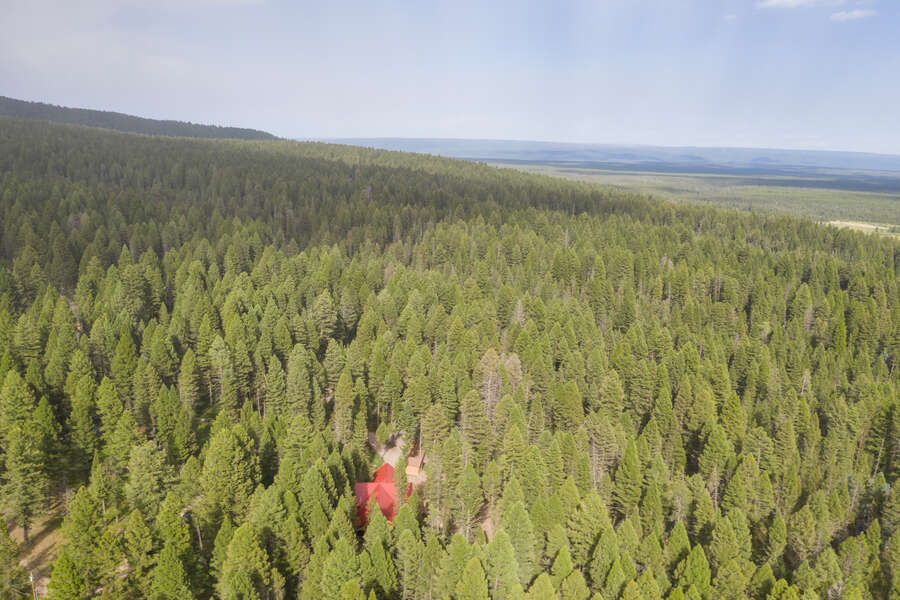 Lodgepole Lookout