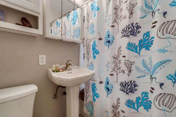 Pedestal Sink, Shower Curtain, Mirror, and Toilet.