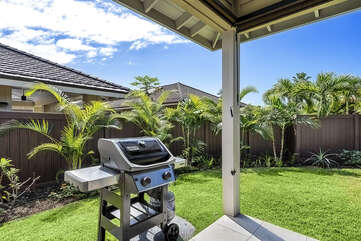 The grill on the back lanai.