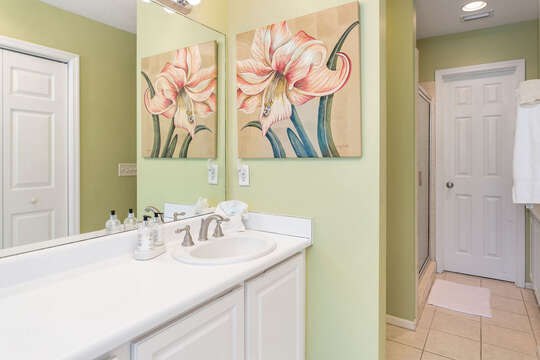 Bathroom with Cabinet Vanity Sink.