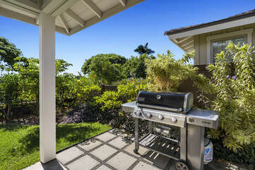 Grill on the back lanai.