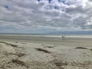 Walk along Seabrook Islands 3.5 miles of incredible beach