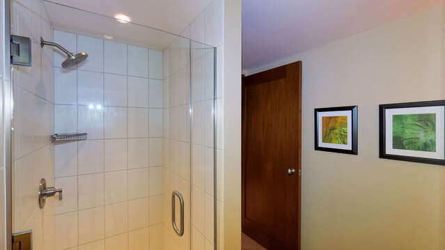 Second Bathroom Shower