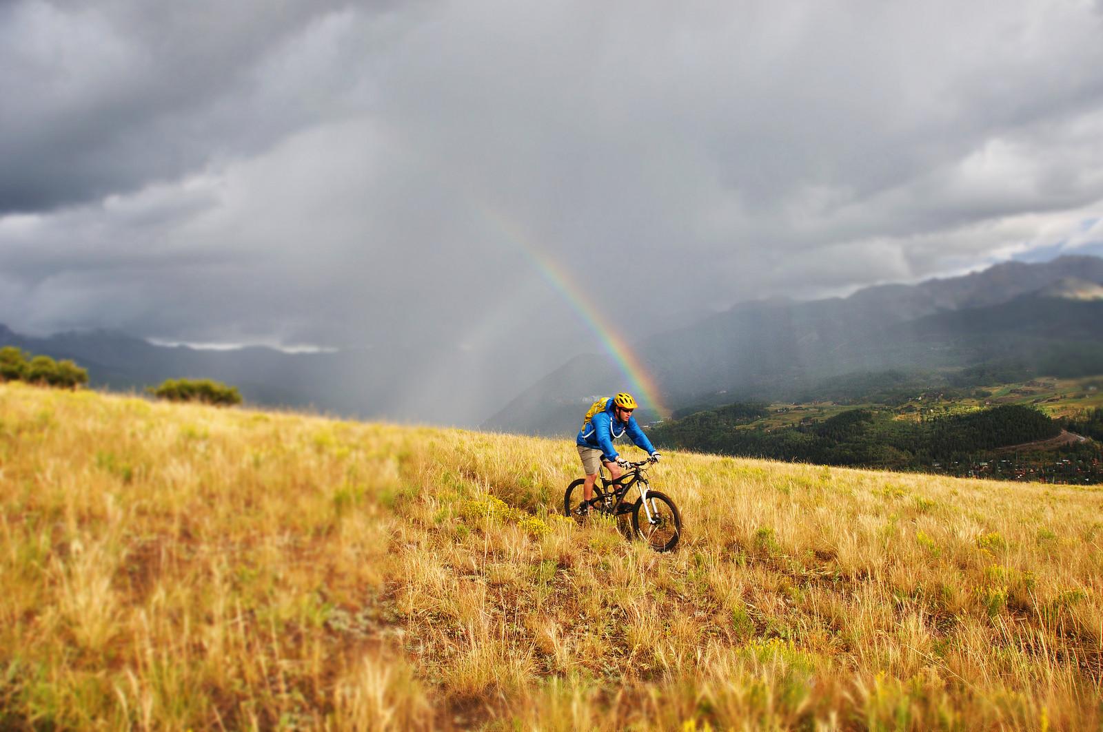 Person on bike through a field