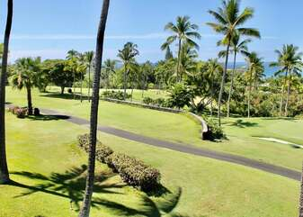 Golf Course and Palm Tree Views from the Lanai