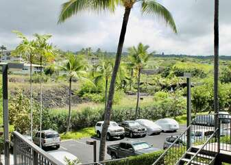 Parking Lot and Palm Trees at Country Club Villas