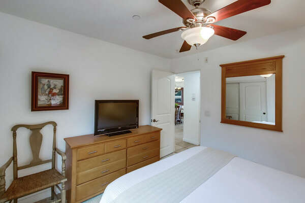 Guest Bedroom - Queen Bed & TV