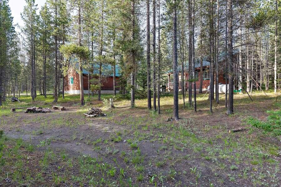 Restoration Pines