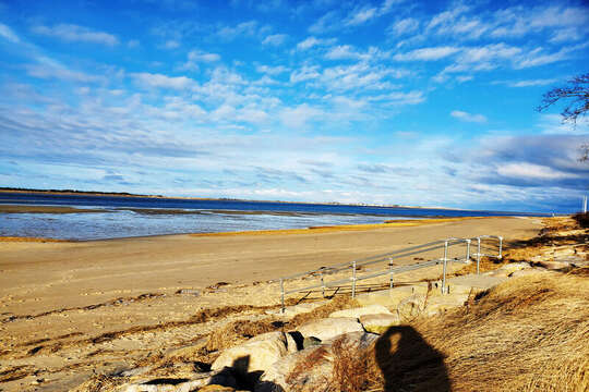 Millway Beach is across the Street.- Barnstable Cape Cod New England Vacation Rentals