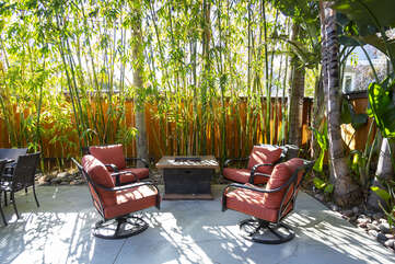 Walk out of the sliding doors in the back into this beautiful private back yard. Natural bamboo trees provide plenty of shade. Don't forget about the fire-pit!