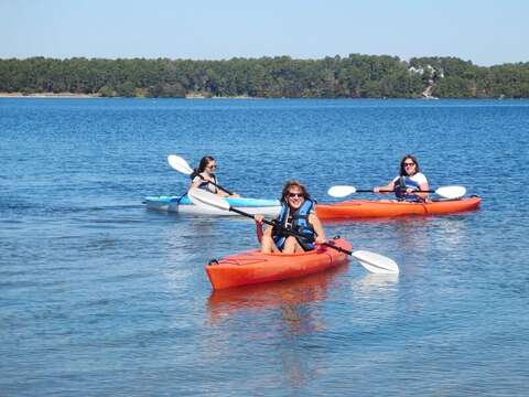 Enjoy a afternoon of Kayaking on the pond. Harwich, Cape Cod, New England Vacation Rentals.