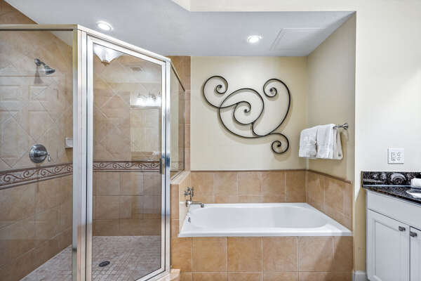 Large Master bathroom with stand up shower and bathtub