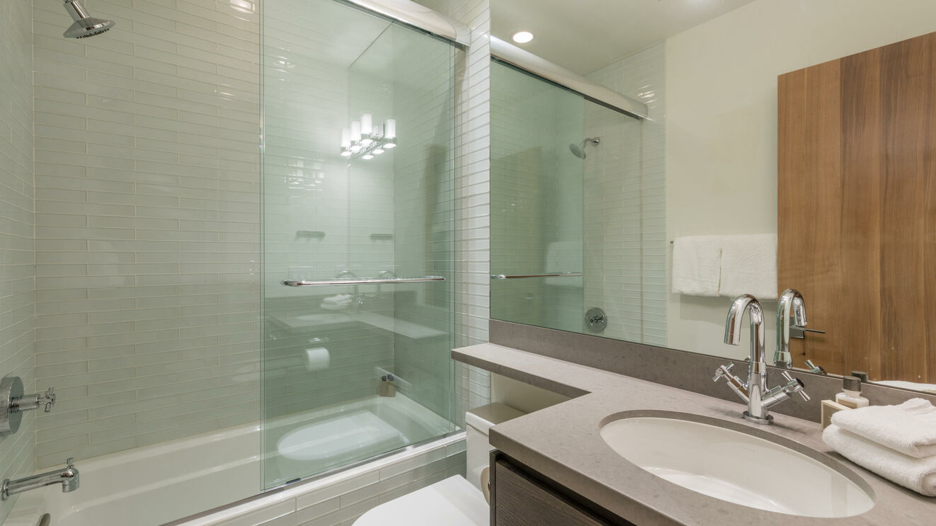 Lower Level Guest Bathroom