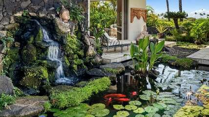 Courtyard with water feature and Koi pond