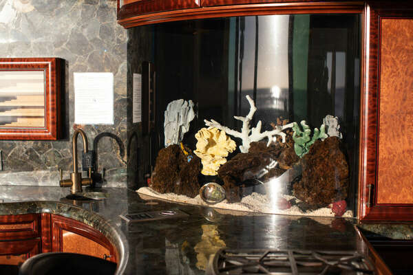 Image of the Fish Tank on Counter.
