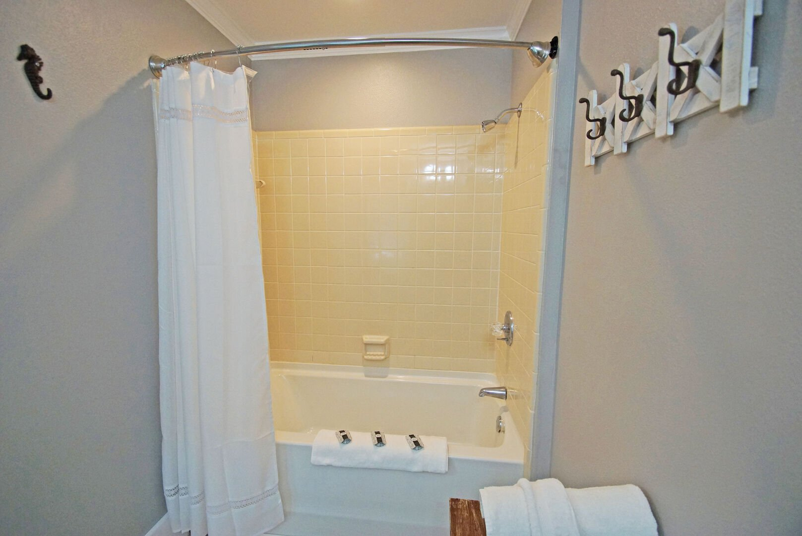 Tub-Shower Combo with Shower Curtain.
