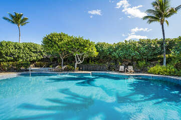 View of the Mauna Lani Point Pool