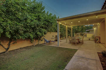 Picture perfect backyard with beautiful greenery.