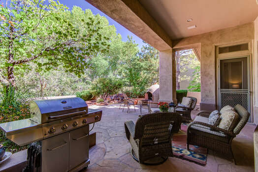 Patio Furnishings and a Propane Gas BBQ