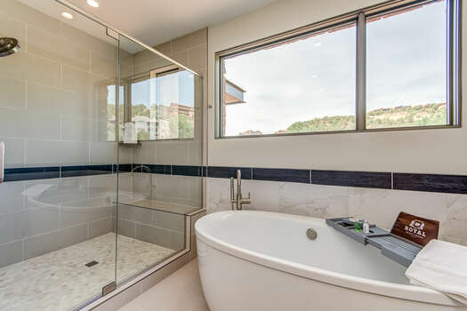 Soaking Tub and Tile/Glass Shower