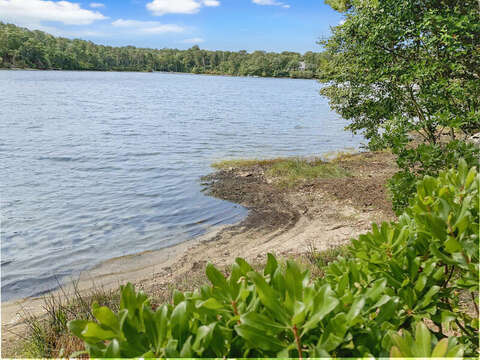 Launch area in back yard to Joseph's pond for kayaks and canoe - 35 Vacation Lane Harwich Cape Cod - New England Vacation Rentals