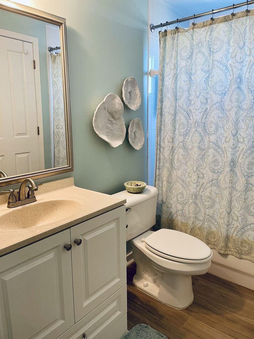 Shared Bathroom (King and Hallway)