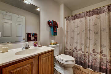 Main Floor Hallway Bathroom