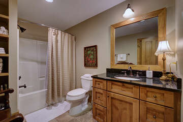 Lower Level Guest Bath
