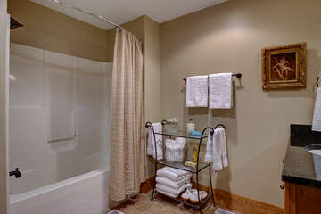 Lower Level second Guest Bath with combo shower/tub