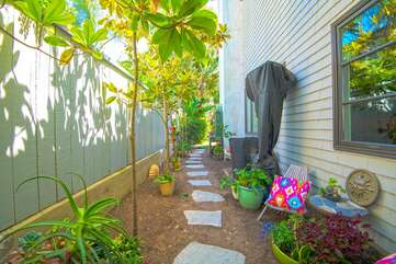 This is the small side yard on the East side of the house.