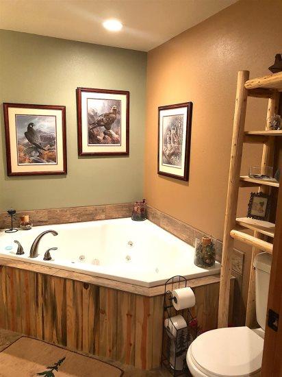Lower Level Master Bath jacuzzi tub