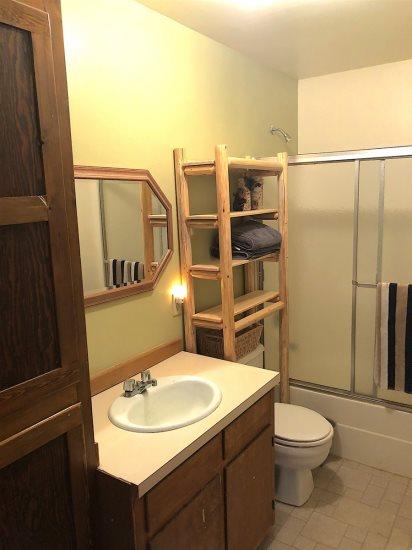 Lower Level hall bath with tub/shower
