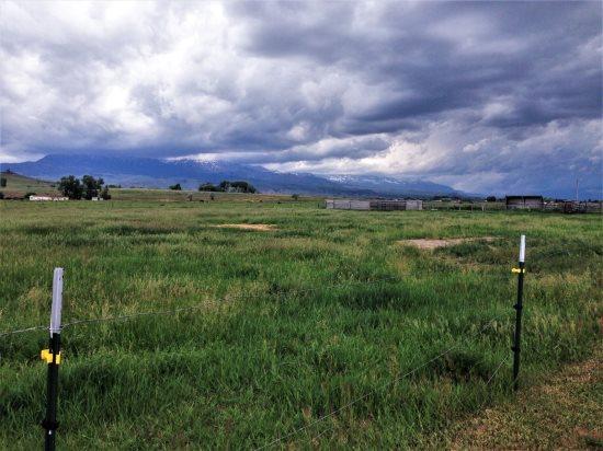View of Carter Mountain