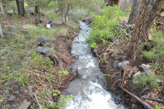 Green Creek