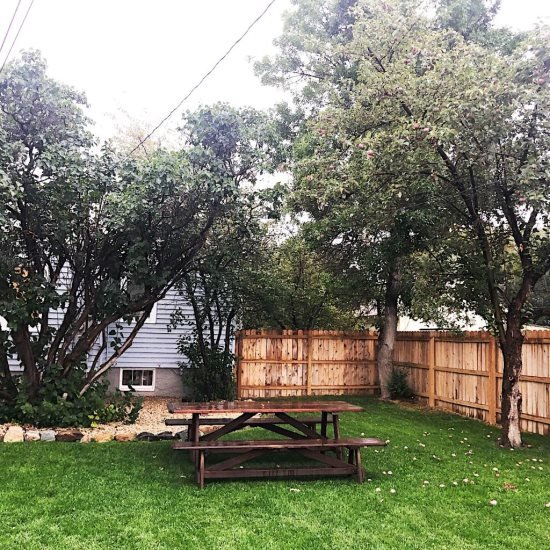 Fully fenced yard