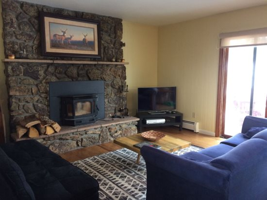 Living Room with cozy stone fireplace