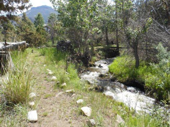 Green Creek runs through the property