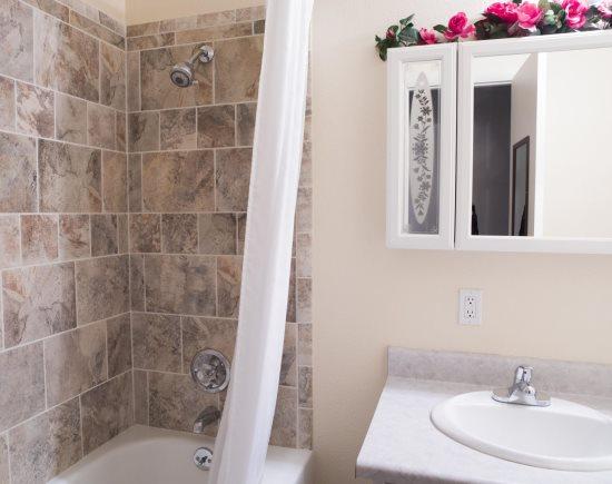 Main Floor Hall Bath with tile shower