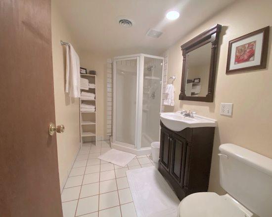 Lower Level Hall Bath