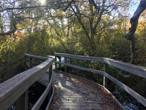 Fort Hill walking trails-Eastham- Cape Cod- New England Vacation Rentals